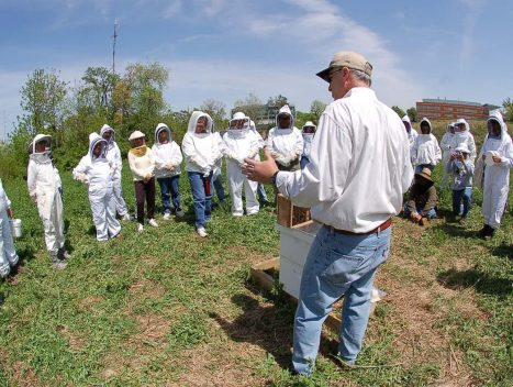 A group of beekeepers standing outside listening to a man educating them on proper beekeeping techniques at EMBA annual workshop